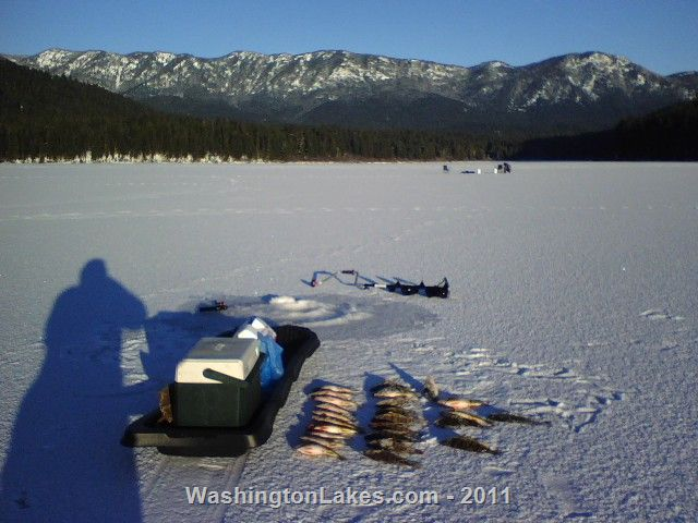 Fish lake information northwest fishing reports for Fishing reports washington