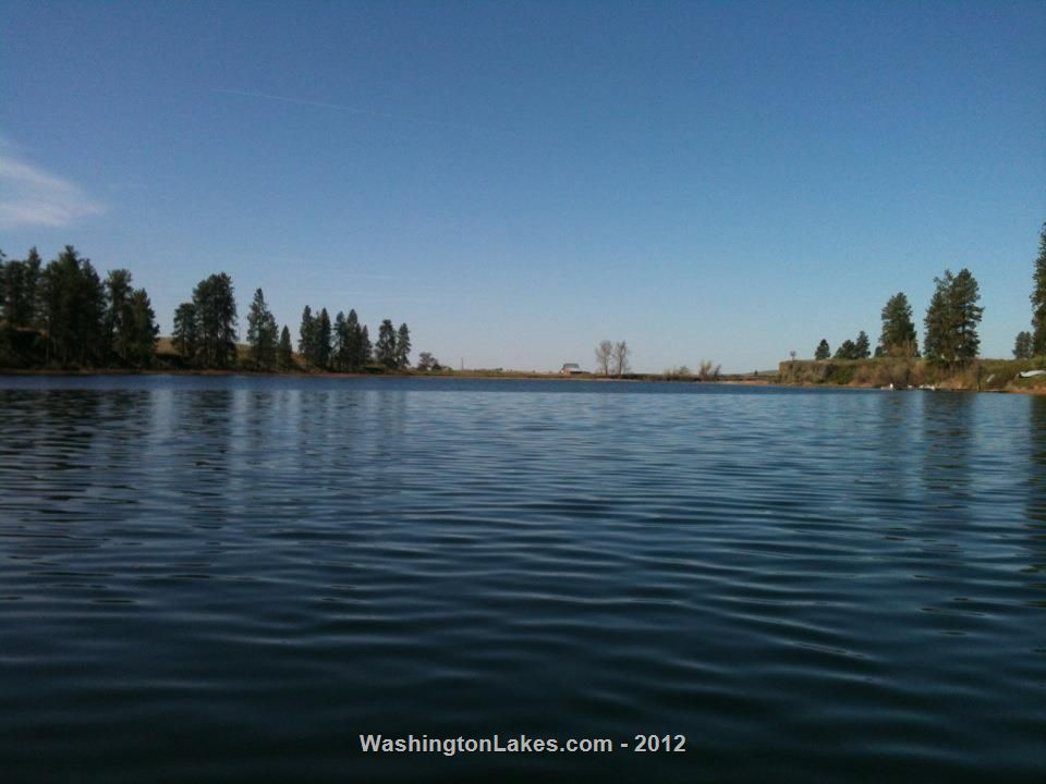 Amber Lake Report Spokane County Wa Nwfr