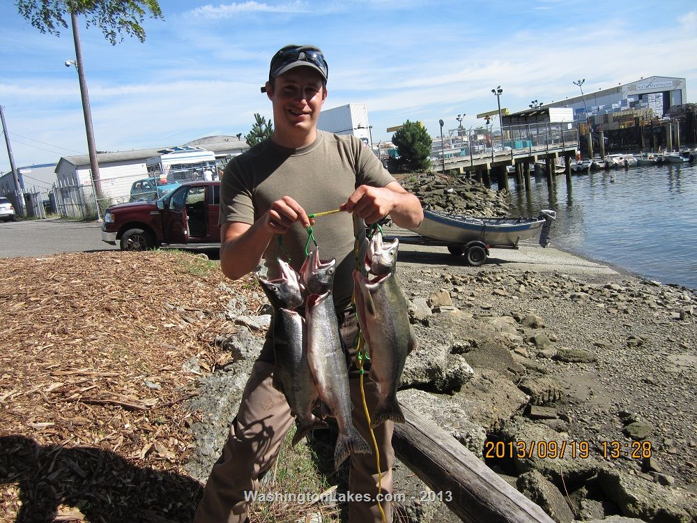 Duwamish river photo gallery northwest fishing reports for Wdfw fishing emergency rules