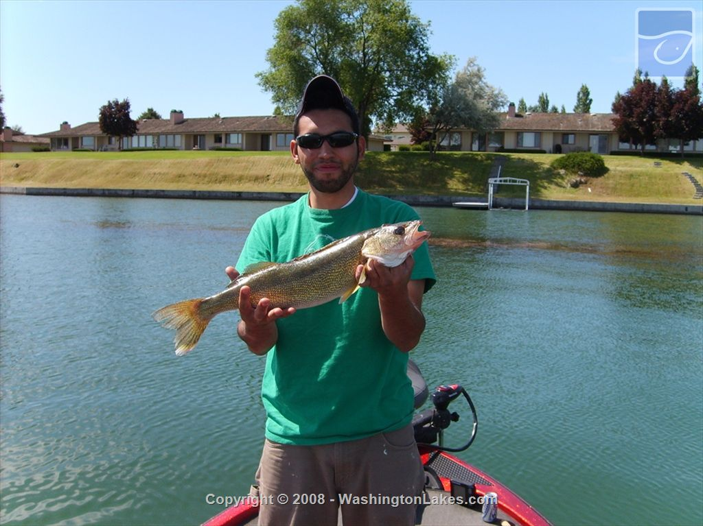Moses fishing report northwest fishing reports for Wdfw fishing emergency rules