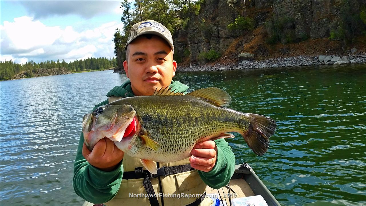 Clear fishing report northwest fishing reports for Clear lake fishing report