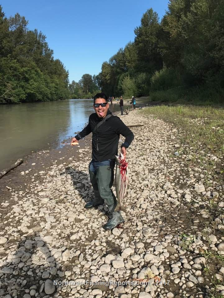 Puyallup river fishing report northwest fishing reports for Puyallup river fishing