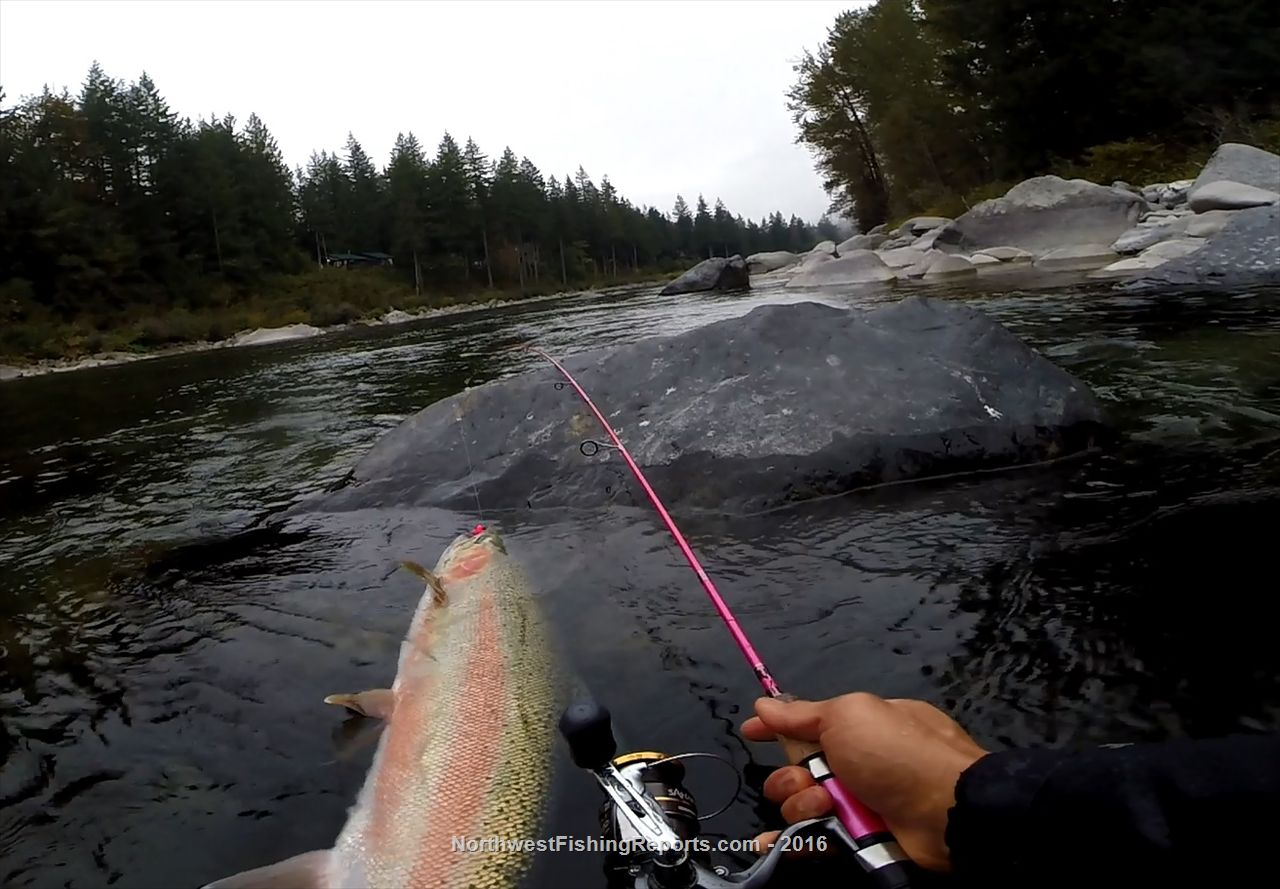 skykomish river photo gallery northwest fishing reports