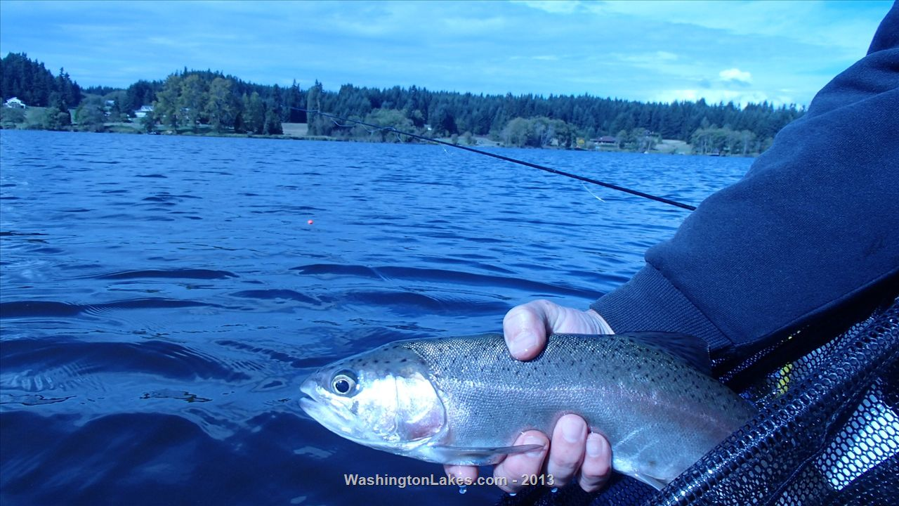 Lone fishing report northwest fishing reports for Nw fishing report