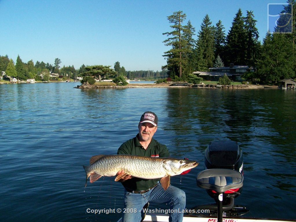 Tapps fishing report northwest fishing reports for Nw fishing report