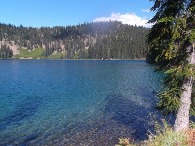 Twin sisters lakes golden trout northwest fishing reports for Twin lakes fishing report
